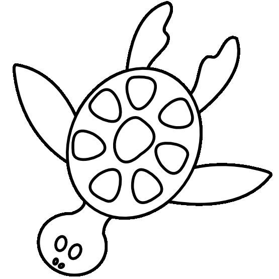 555x555 Clip Art Colorful Animal Sea Turtle Black White