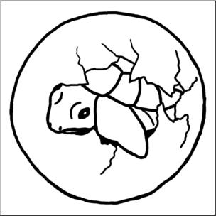 304x304 Clip Art Sea Turtle Hatchling Bampw I Abcteach