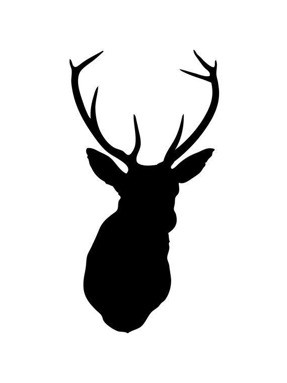 570x760 The Best Black Deer Ideas Animals With Antlers
