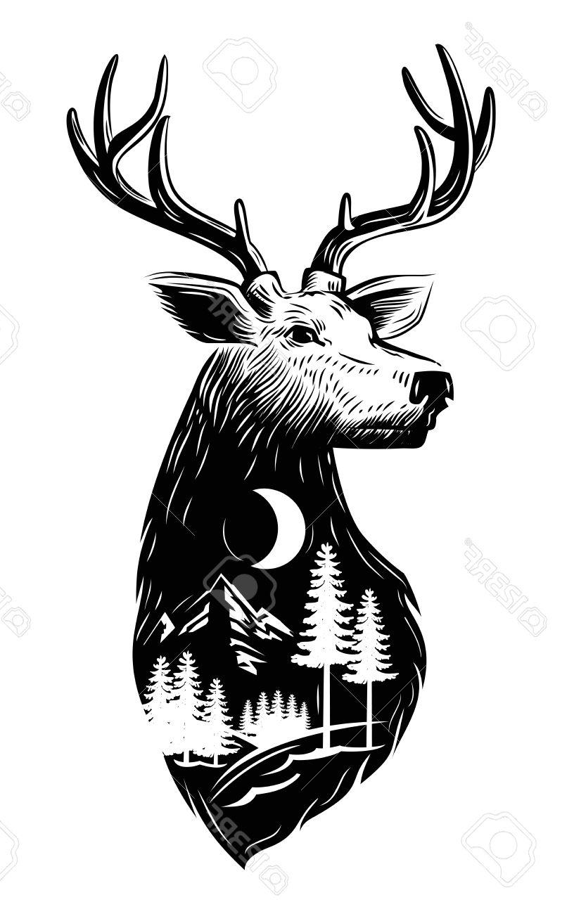Black And White Deer Head Free Download Best Black And