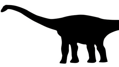 391x220 Black And White Dinosaurs Tumblr