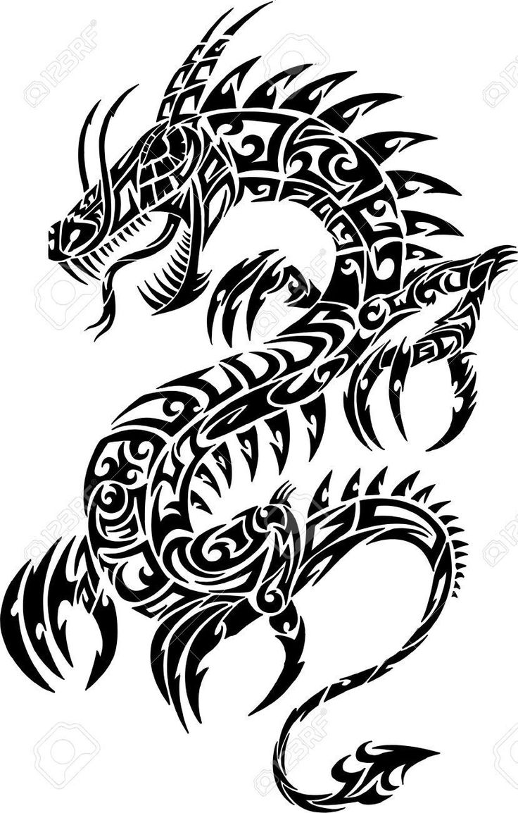 736x1154 30 best Simple Dragon Arm Tattoos images Sleeve