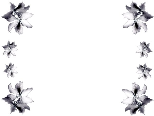 Black and white flower border free download best black and white 600x450 best black and white flower border mightylinksfo