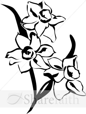 Black and white flower images clipart free download best black and 292x388 daffodil clipart black and white mightylinksfo