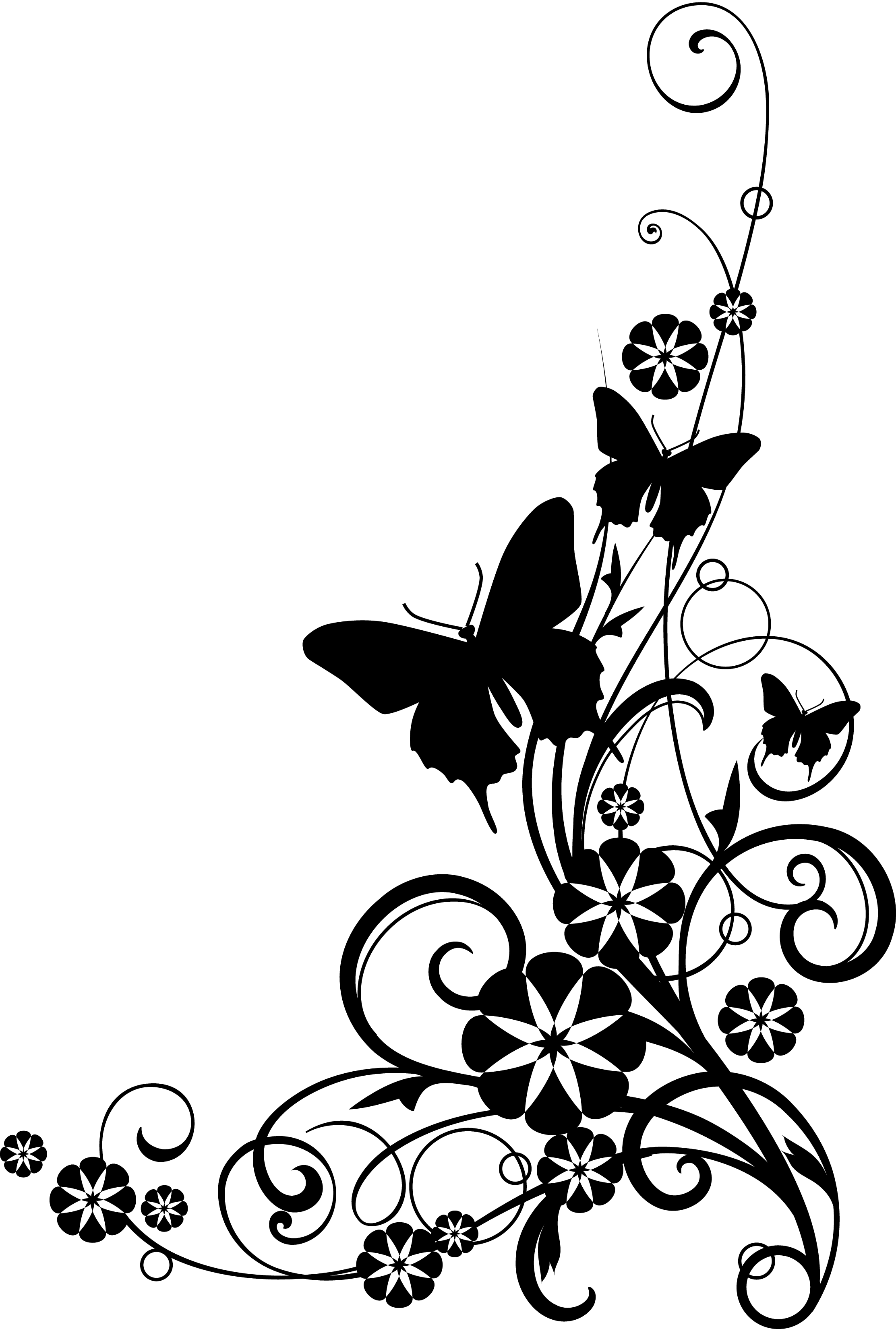 2225x3300 Flowers Clipart Black And White