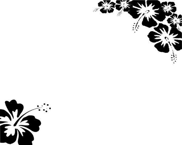 600x480 Black white Flower Wallpaper By Revenniaga Real
