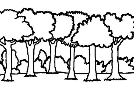450x300 Forest Clip Art Black And White Background