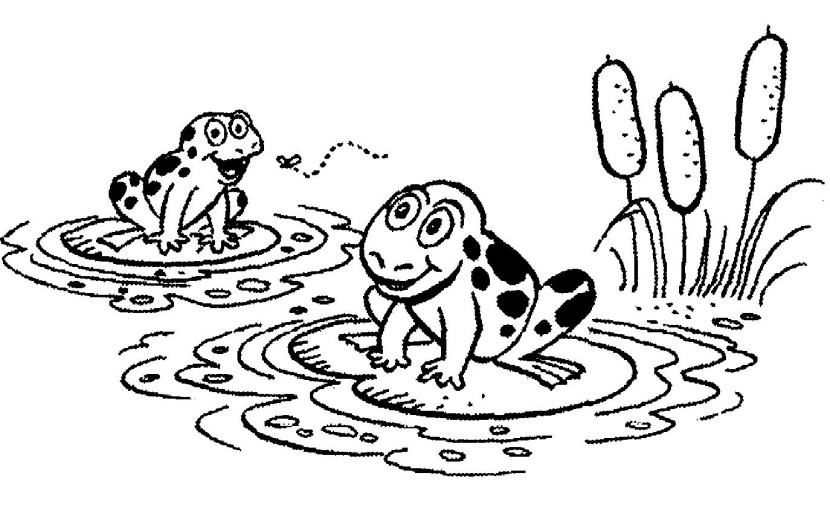 830x525 Frog On Lily Pad Clipart