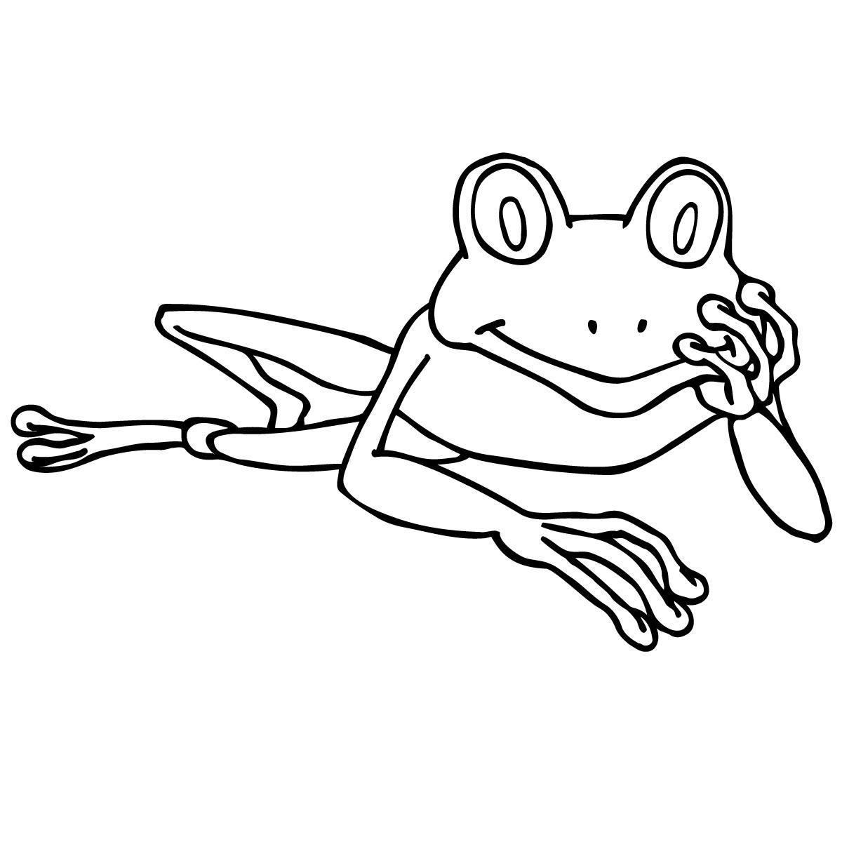 1200x1200 Best 15 Tree Frog Clipart Photos