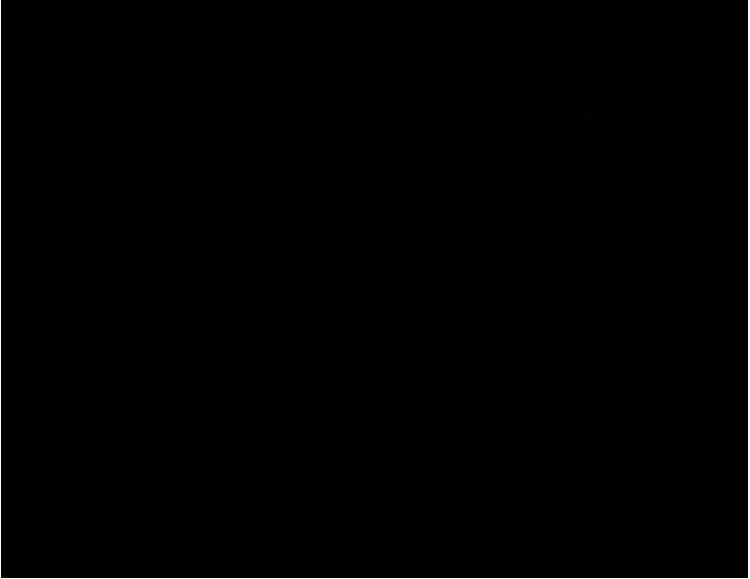 750x579 Black Frog Designs