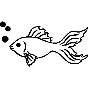 Black And White Goldfish
