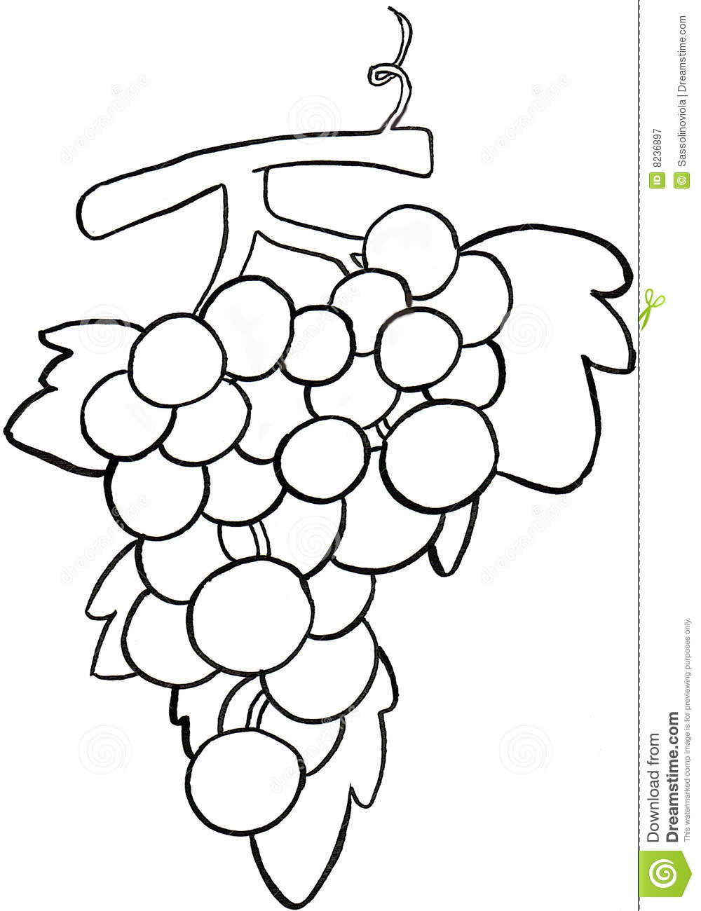 Black And White Grapes Clipart | Free download best Black And White ...