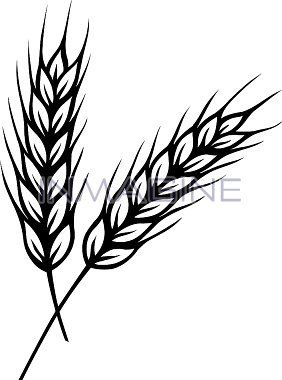 Black And White Grass Clipart