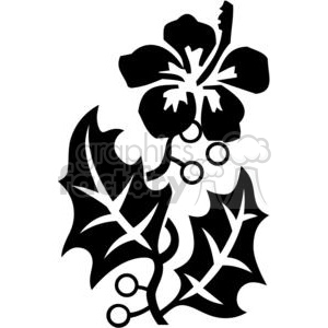 300x300 Royalty Free Hibiscus Black And White Art 380113 Vector Clip Art