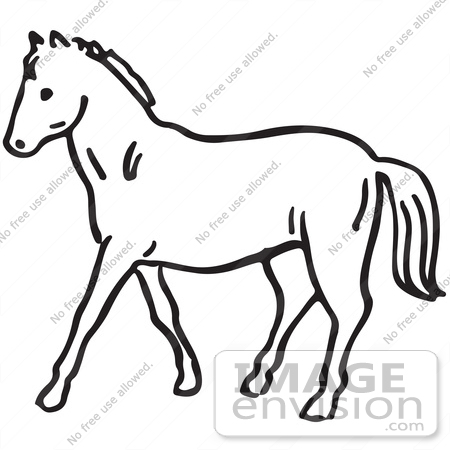 450x450 Clipart Of A Horse In Black And White