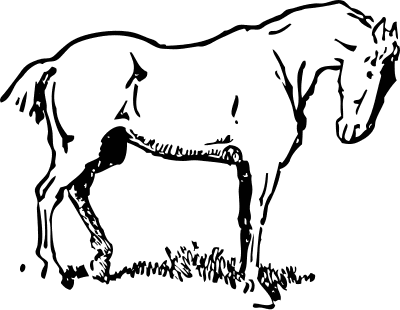 400x310 Draught Horse Clipart Black And White