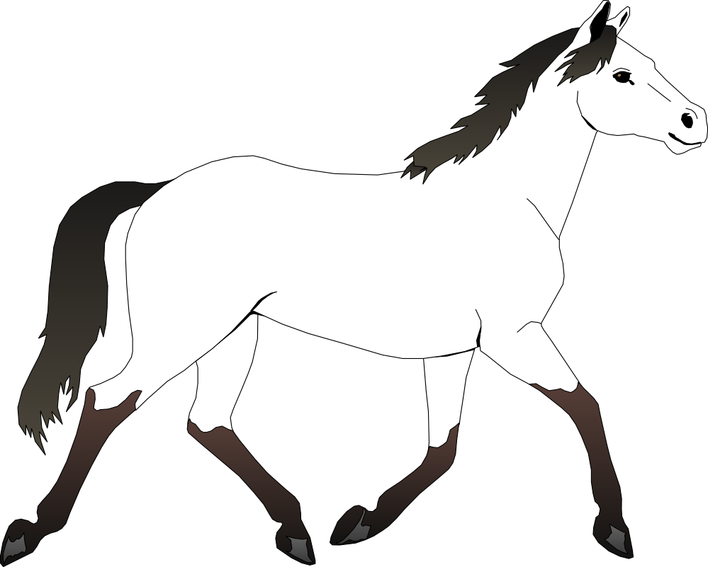 999x801 Best Horse Clipart Black And White