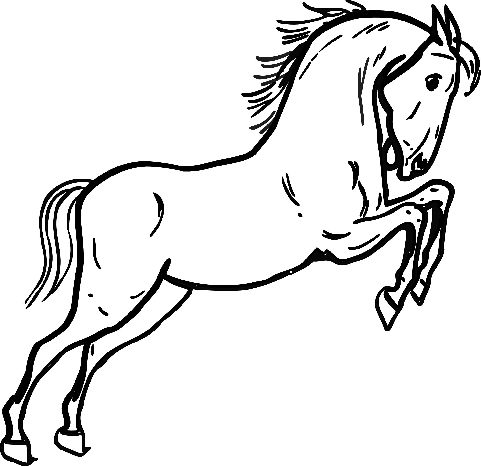 1969x1909 Drawn Horse Black And White