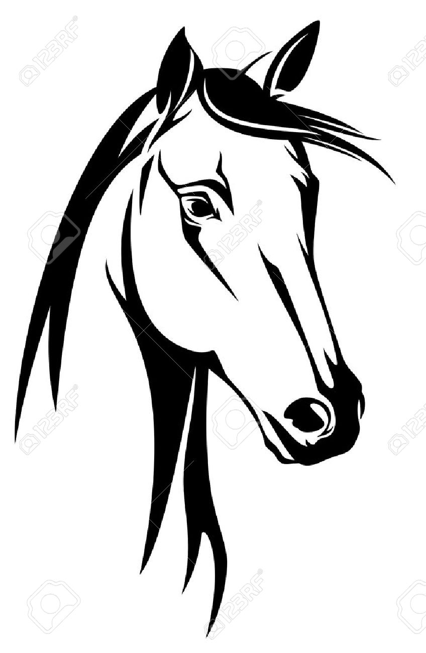 848x1300 Horse Head Black And White Design Royalty Free Cliparts, Vectors
