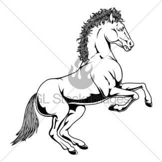 325x325 Rearing White Horse Gl Stock Images