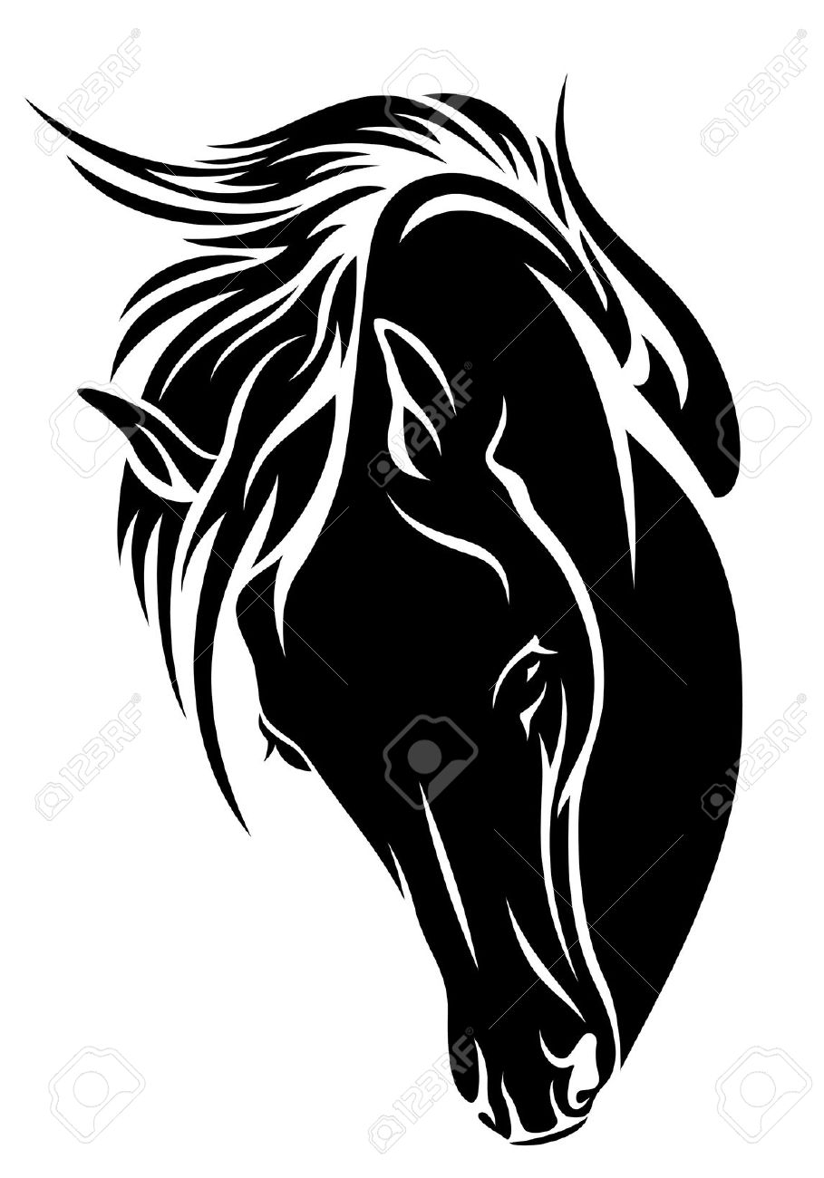 909x1300 15 Black And White Horse Head Pictures Ideas Black And White