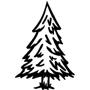 300x300 Christmas Tree Black White Evergreen Trees Clipart Black