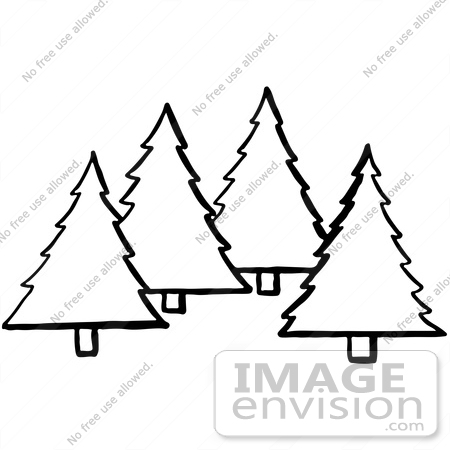 450x450 Clipart Of Evergreen Trees In Black And White