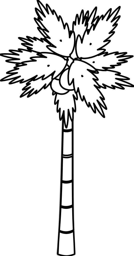 555x1059 Tree Black And White Palm Tree Clipart Black And White Free