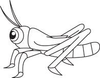 195x152 Grasshopper Clipart Bug