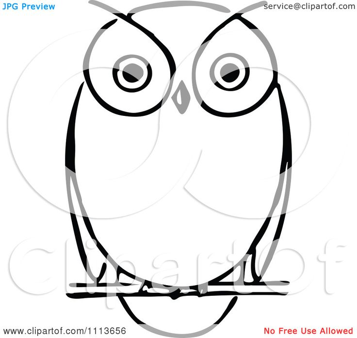 Black And White Owl Clipart
