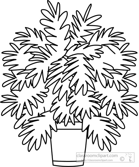 Black And White Plant Clipart   Free download best Black ...