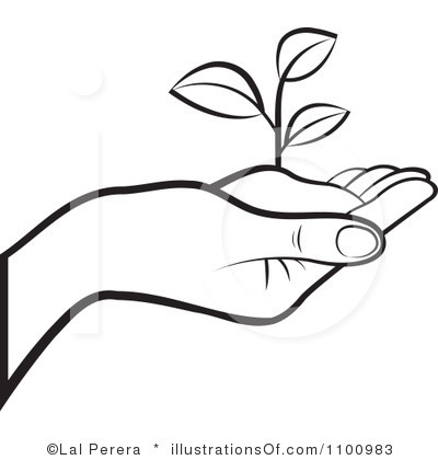 black and white plant clipart free download best black