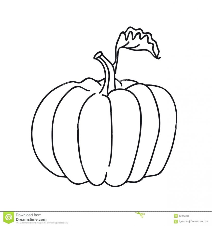 Black And White Pumpkin Outline | Free download best Black And White ...