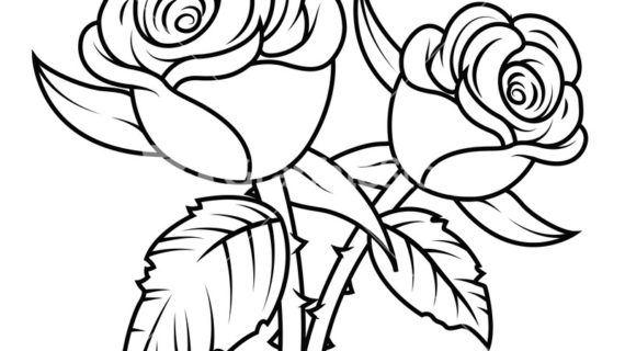 Black And White Rose Clipart