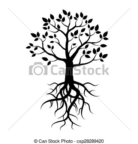 450x470 Roots Clipart Tree Drawing