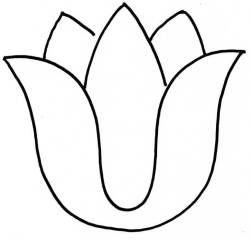 250x241 Tulip Clipart Black And White