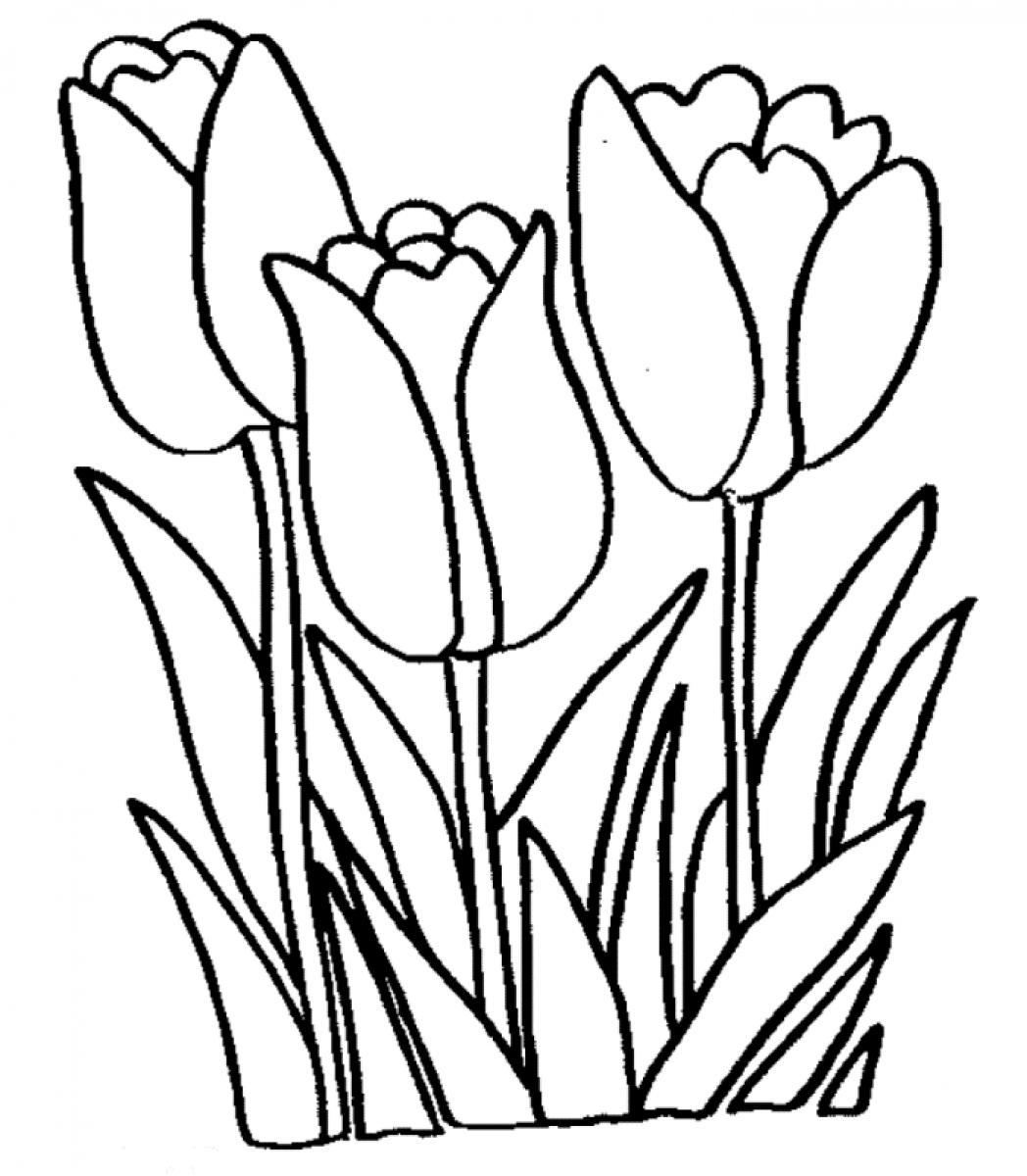 1048x1200 Yellow Tulip Clipart Image