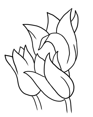 320x400 Black And White Butterfly Outline Free Flower Clip Art Outline