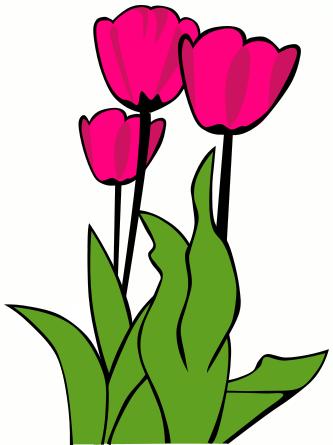 333x445 Black And White Tulip Clip Art Black And White Tulip Image Image