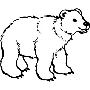 300x300 Bear Clipart Black And White
