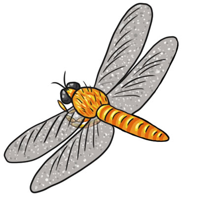 400x400 Cute Dragonfly Black And White Clipart