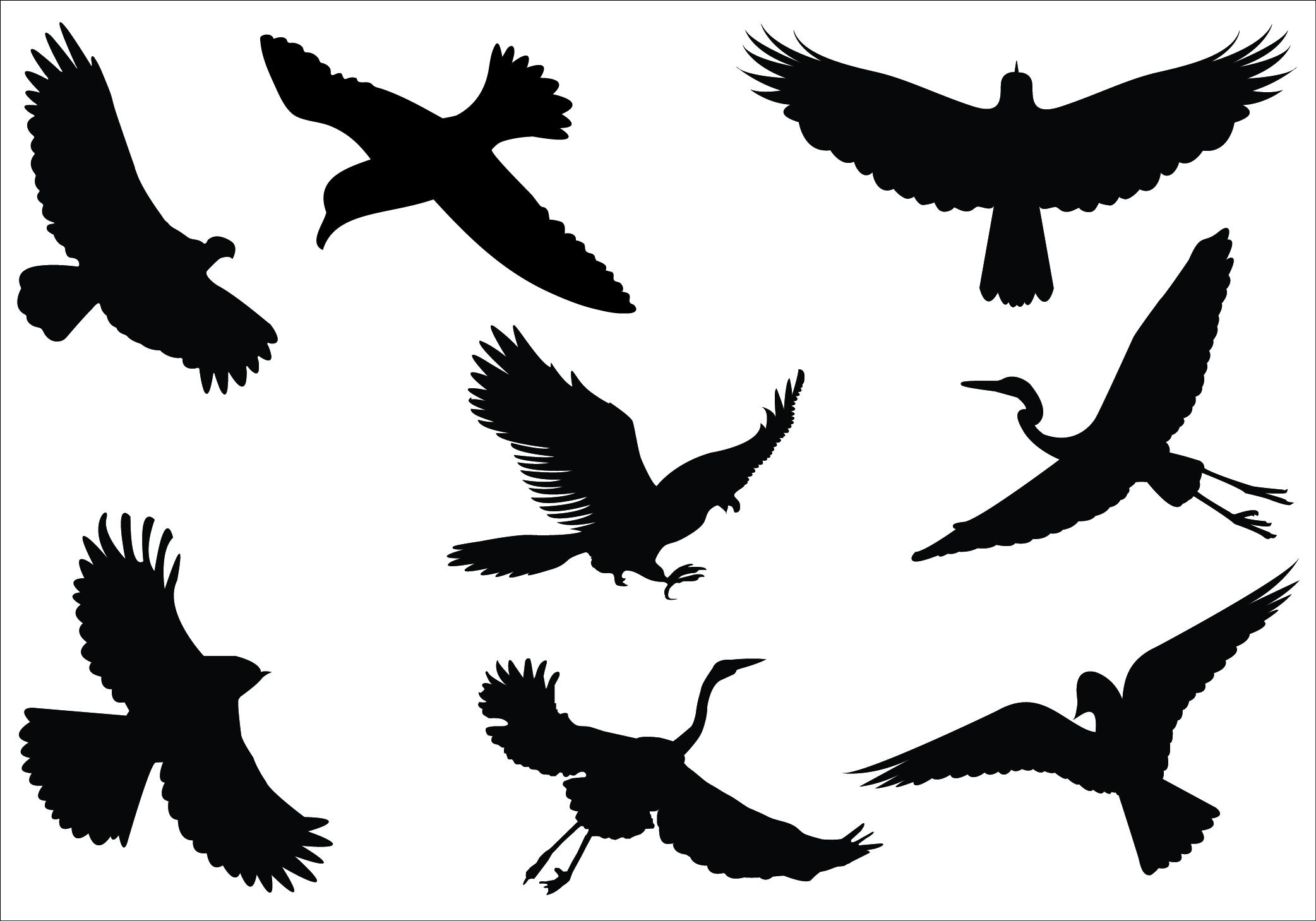2084x1459 Bird Fly Clipart