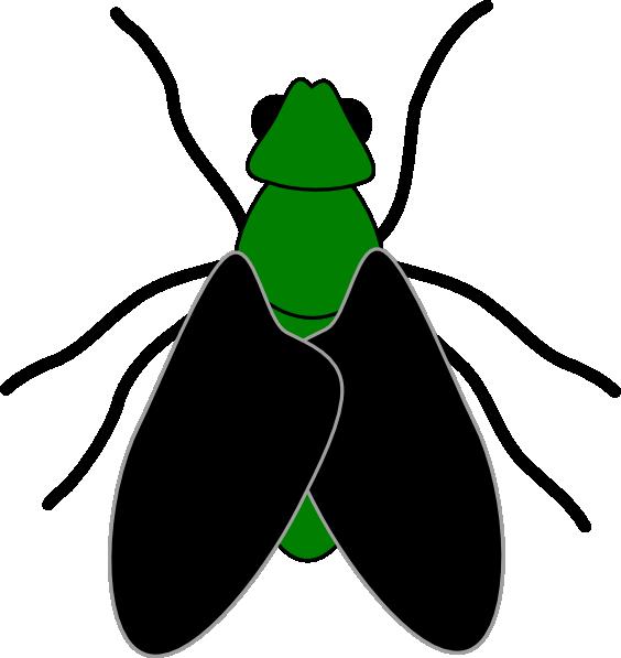 564x597 Green Fly Black Clip Art