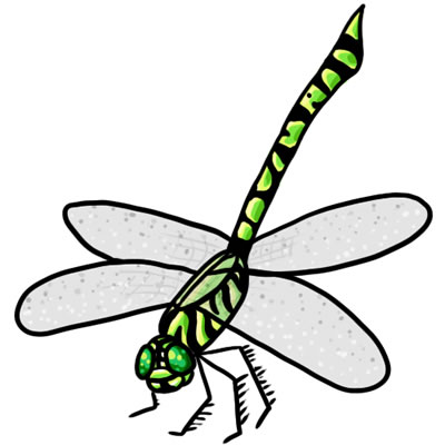 400x400 Clipart Of Dragonflies