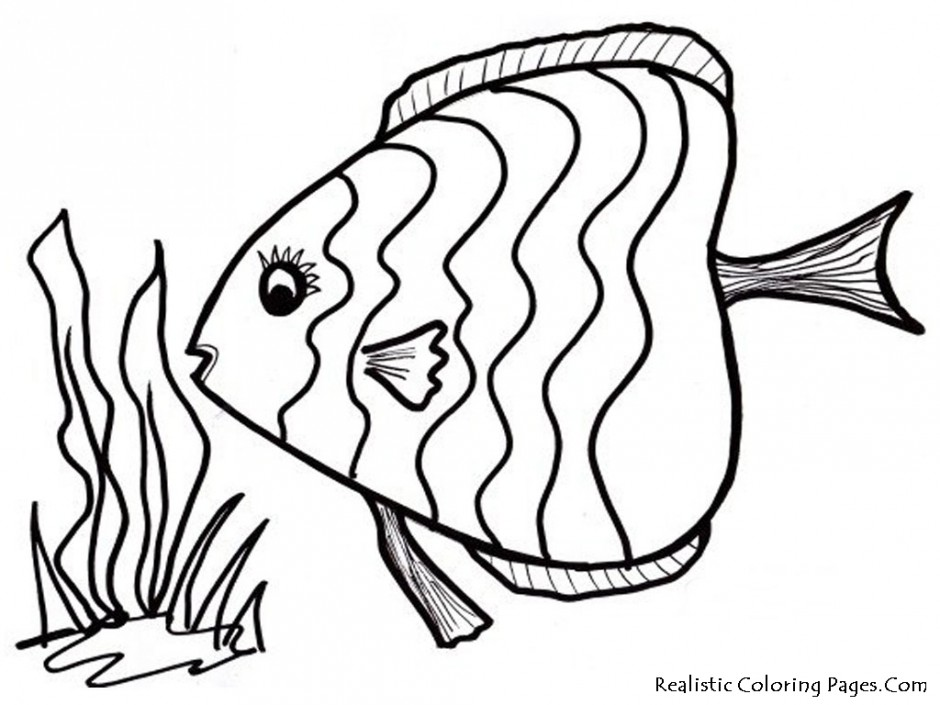 940x705 Fish Outline Image Many Interesting Cliparts