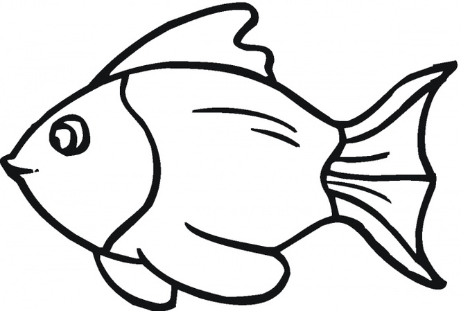 665x449 Fish Outline Outline Of Fish Clipart 2