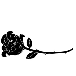 300x300 Black Rose Graphics Rose Clip Art Images Rose Stock Photos