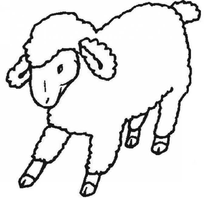 672x654 Sheep Clipart 9