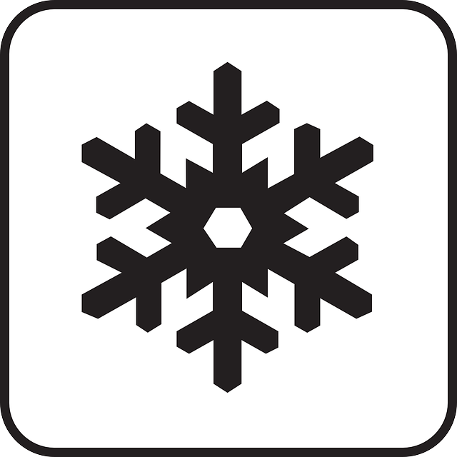 640x640 Free pictures SNOWFLAKE