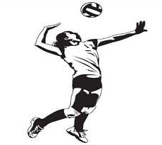 228x205 Free Volleyball Players Clipart